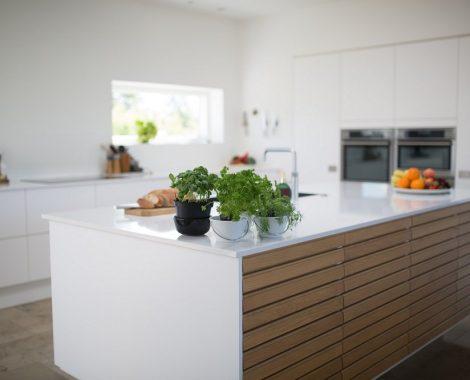 green-leafed-plants-on-kitchen-island